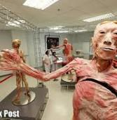 आस्ट्रेलिया में बनेगा पहला मानव शरीर संग्रहालय