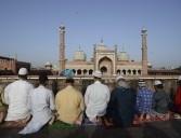 'भारतीय मुस्लिम आईएस और अलकायदा से प्रभावित नहीं'