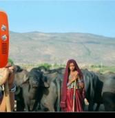 एनडीडीबी को 10 लाख किसान बेचते हैं दूध : चेयरमैन टी नंद