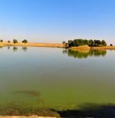 तालाब – समझने से ही बात बनेगी