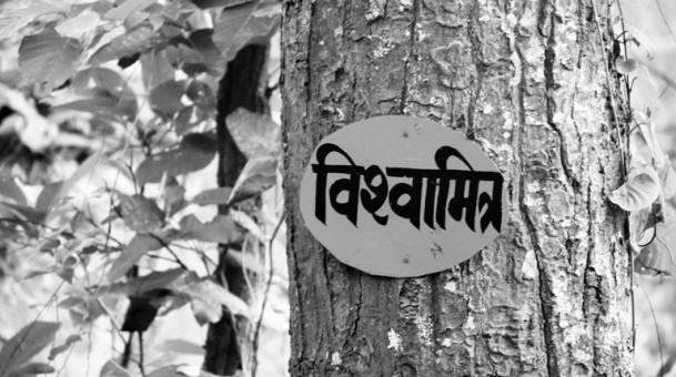 """""""पर्यावरण प्रयोगशाला"""" जंगल में संचालित करवा रहे वन अधिकारी ,जंगल बचाने और जनमानस को जंगल से जोड़ने का अद्वितीय प्रयोग"""